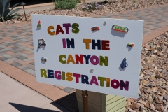 1_stone-canyon-community-foundation-cats-in-the-canyon-2019-01