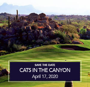 Stone Canyon Community Foundation Cats in the Canyon 2020